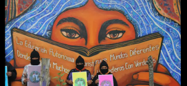 Libri dell'escuelita zapatista in linea