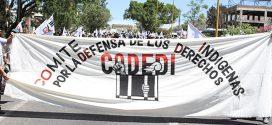 ACCIÓN URGENTE: Grupo armado levanta a coordinador de CODEDI en Pochutla